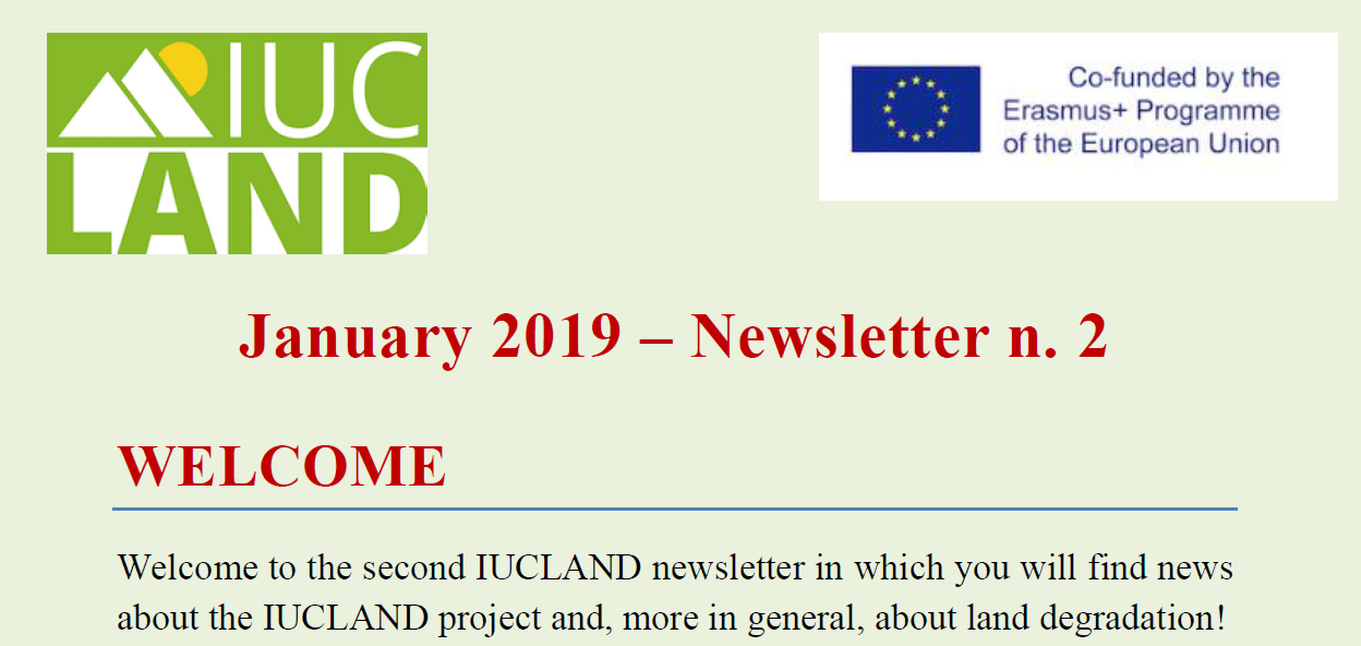 News second newsletter